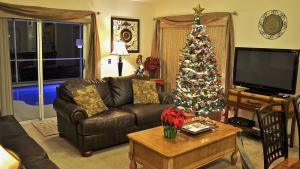 Celebrate Christmas in Florida! Note the new leather sofas!