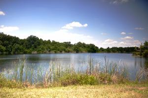 Thousand Oaks Lake 1920x1280